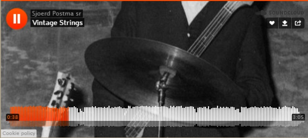 Sjoerd Postma Vintage Strings